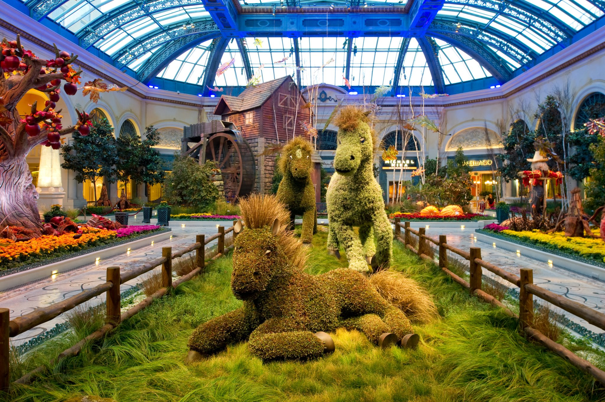 Travel Through A Lens: Bellagio Conservatory & Gardens | Galavantier