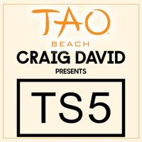 CRAIG DAVID PRESENTS TS5 at TAO Beach on Sat 8/4
